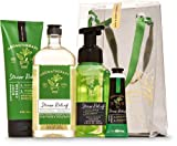 Bath and Body Works EUCALYPTUS SPEARMINT Aromatherapy Gift Bag Set - Body Cream - Body Wash & Foam Bath - Hand Soap and Hand Cream