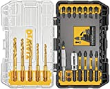 DEWALT FlexTorq Driver/Drill Bit Set, Impact Ready, 20-Piece (DWA20IRTIN-Z)