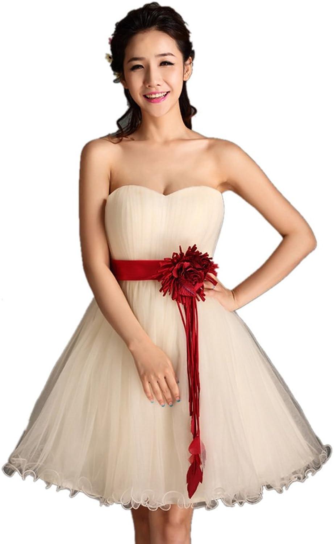 Dearta Women's ALine Sweetheart Short Mini Tulle Evening Dresses