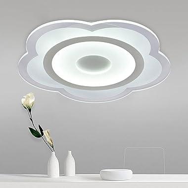 RFYRNL Ultra-mince Salon Plum Blossom Plum Light Simplicité moderne Économie d'énergie Protection des yeux Lampes LED Cha