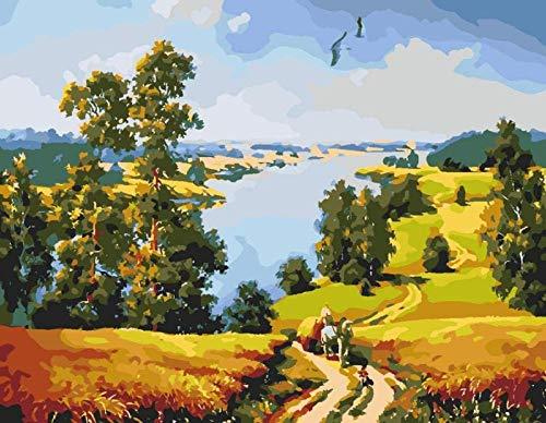 HAON Paint by numbers kits met penselen en acrylpigment DIY canvas schilderij voor volwassenen Beginner - landelijk landschap 16X20 inch (zonder frame)