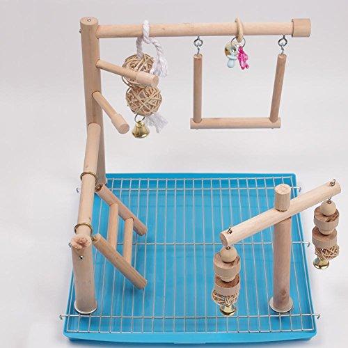 Pet Myyxt Pappagallo Toys Scaletta di Legno dell'uccello con Le Campane Esercizio Amaca Swing...