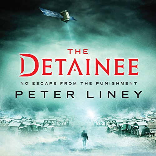 The Detainee audiobook cover art