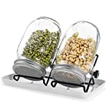 Seed Sprouting Kit Mason Jar Set with 2pcs 32oz Glass Jars / 304 Stainless Steel Sprouting Lids/Drip Tray / 2pcs Adjustable stands for Sprouting Growing Broccoli, Alfalfa, Mung Beans and More