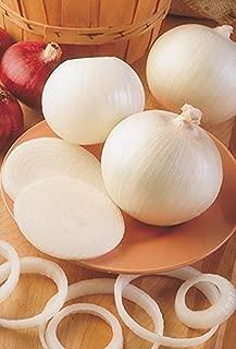 Sierra Blanca Hybrid Onion, White, Vegetable, Non-GMO 250 Seed