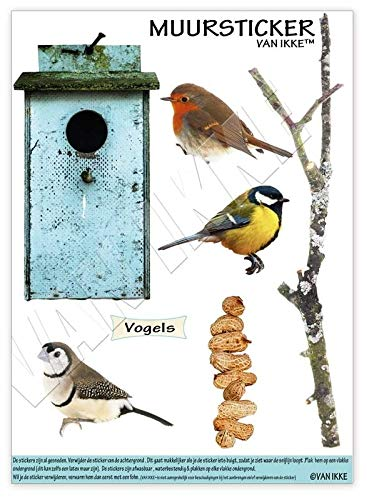 VAN IKKE vogels met vogelhuisje