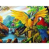 Taladro Redondo Completo 5D Kit De Pintura De Diamante Diy Mosaico Punto De Cruz Animales Bordado Pájaro Diamantes De Imitación Loro Cubo 40X50cm