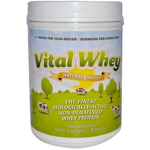 Well Wisdom - Vital Whey Natural Vanilla Flavor 600g (21oz) [Health and Beauty]