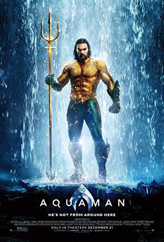 Lionbeen Aquaman Movie Poster Cartel de la Pelicula 70 X 45 cm
