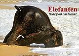 Elefanten. Badespaß am Strand (Wandkalender 2020 DIN A4 quer)