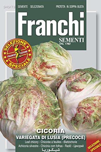franchi sementi Panachées LUSIA Chicorée de début enveloppe de 4 grammes