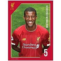 Liverpool FC Headshot Photo Wijnaldum/リバプールFCヘッドショット写真Wijnaldum