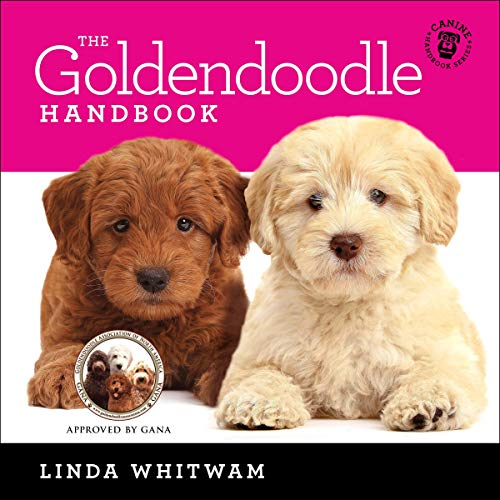 The Goldendoodle Handbook: The Essential Guide For New & Prospective Goldendoodle Owners (Canine Handbooks) Titelbild