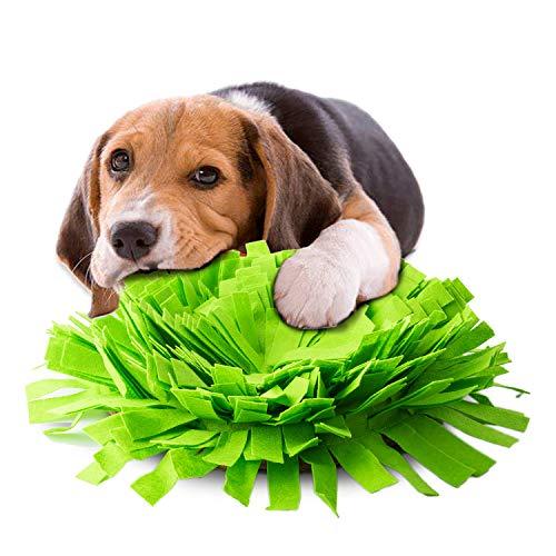 Vagasi Schnüffelmatte Fressnapf Hund Anti schling 2 in 1 rutschfest, Grün