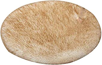 Plush Round Rug, Indoor mat, Simple Rug, Suitable for Living Room/Bedroom/Study Bath Mat Washable Soft mat (Color : White,...