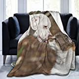 Colorful products Manta de forro polar de 127 x 152 cm, para perro, cachorro, gato, hogar, forro polar, suave y cálido, manta de felpa para cama, sofá, oficina, camping