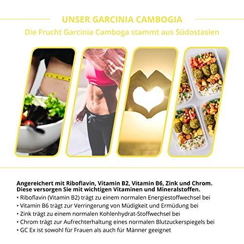 GC Ex, 1500 mg Garcinia Cambogia Extrakt, 90 Kapseln in Premiumqualität, hochdosiert, 100% natürlich 1er Pack (1x 77g) - 2