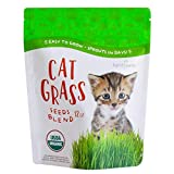 Handy Pantry Organic Cat Grass Seed Blend for Planting   A Healthy Mix of Organic Wheat, Barley, Oats, and Rye (12 oz.)