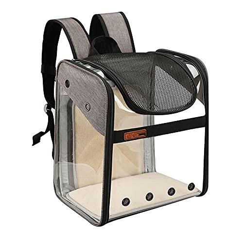 Atmungsaktiver Panoramablick-Haustierrucksack, Transparente Weltraumkatze-Tasche Auf Den Schultern, Pet Bag Zum Ausflug, Einzigartige Expansionsdesign, Faltbare PET-Tasche (Color : Gray)