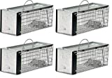 Havahart 0745 One-Door Animal Trap Chipmunk, Squirrel, Rat Weasel, X-Small (Pack of 4)
