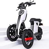 iTango Scooter electrico Adulto con asiento - Patinete...