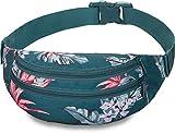 Dakine Classic Hip Pack, riñonera de 2compartimentos con cremallera, funda para las gafas de sol - Riñonera de talla única, accessorio, unisex