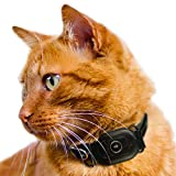 UBEE CAT GPS Tracker for cats, Lightest UK tracker (23g), Unlimited Range, Free & Shareable App, UK Support