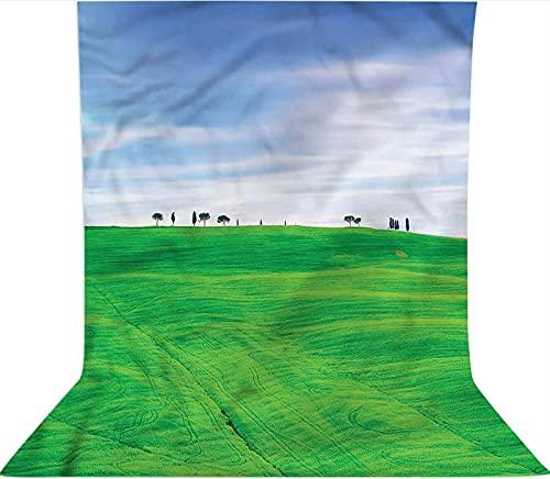 Fondo de fotografía de 1,8 x 2,7 m, fondo de tela de microfibra, decoración de campo rural de la Toscana, pantalla plegable de alta densidad para cumpleaños, bodas, fiestas temáticas