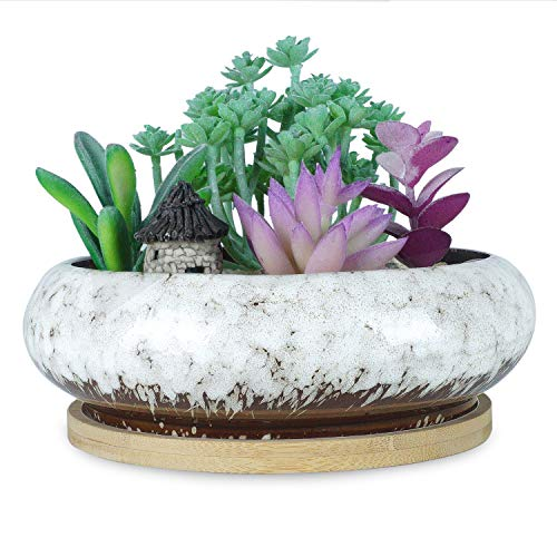 6.1 inch Round Succulent Planter Pots with Drainage Hole Bonsai Pots Garden Decorative Cactus Stand Ceramic Glazed Flower Container Bowl White, with Bamboo Tray