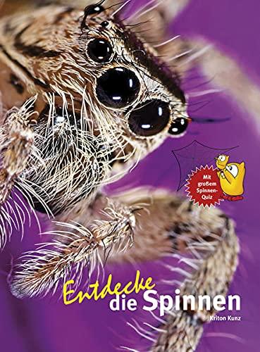 Entdecke die Spinnen (Entdecke - Die Reihe mit der Eule: Kindersachbuchreihe)