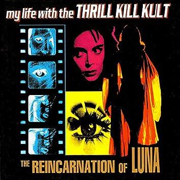 The Reincarnation of Luna