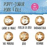Immagine 2 aldog puppy junior pork and