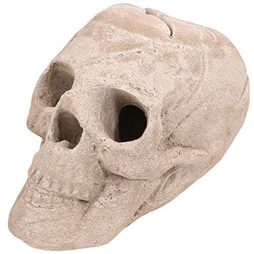 Barton Imitated Human Skull Ceramic Fireproof Fire Pit Skull Gas Log for Natural Gas LP Wood Fireplace Firepit Campfire Halloween Decor, BBQ (Sand)