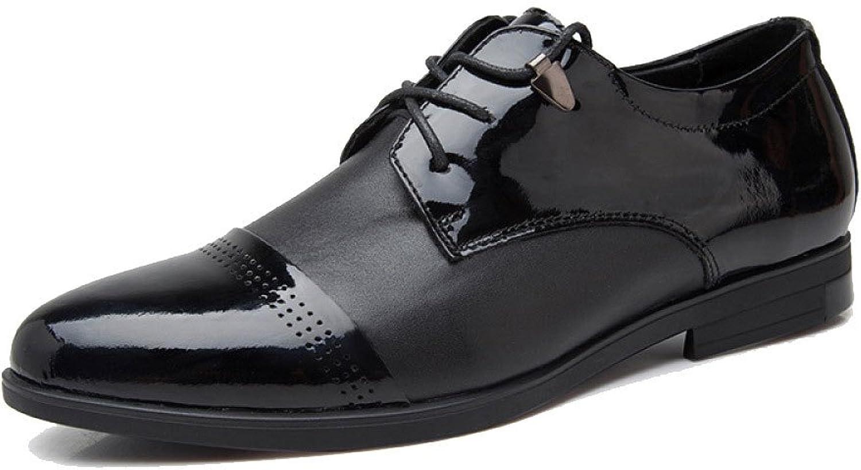 LEDLFIE Men's Business shoes Casual Dress shoes Wedding shoes Work shoes Lace-up