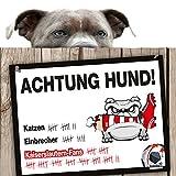 Hunde-Warnschild Schutz vor Kaiserslautern-Fans | Karlsruhe-, Sandhausen- & alle Fußball-Fans, Dieser Revier-Markierer schützt Haus & Hof vor Kaiserslautern-Fans | Achtung Vorsicht Hund Bissig