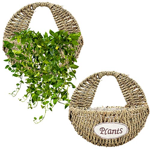 KELLYMOON Wall Hanging Planter, Set of 2 Hand-Made Woven Wall Hanging Baskets for Plants, Indoor Plant Holder Wall Hanging Wicker Basket for Flower Garden Home Decoration