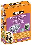 Cléopâtre - LCC19-150-E1 - Résine Epoxy Crystal'Diamond - Coffret de Résine pour Verre crystal - 150 ml