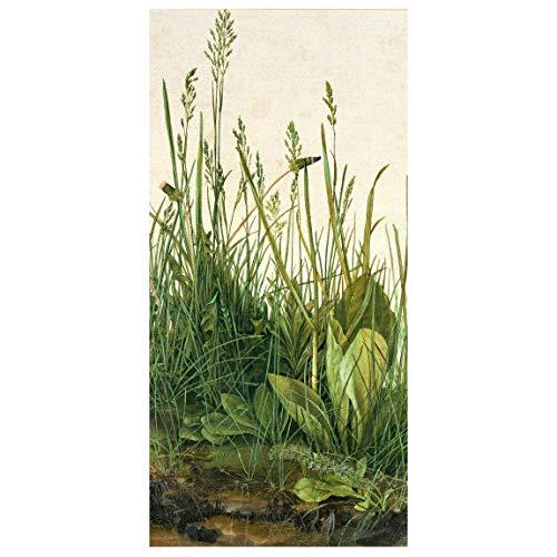 Bilderwelten Panel japones - A. Dürer - Great Lawn 250 x 120cm Incl. Soporte Transparente