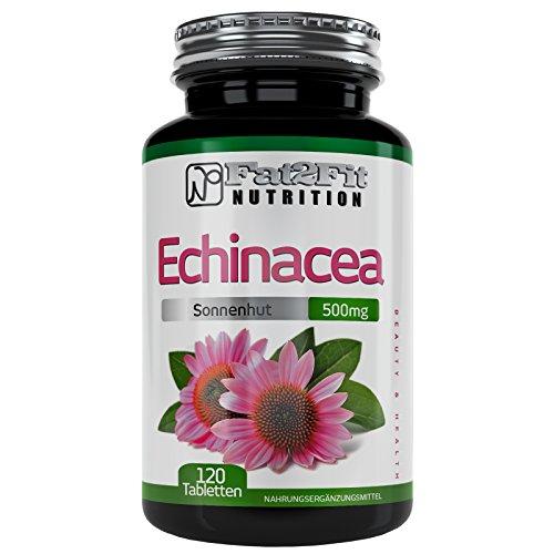 Echinacea 500mg - 120 Tabletten - Die preiswerte Alternative