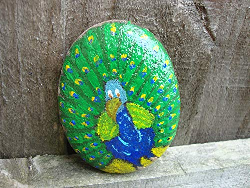 VickyHopeArt Peacock Pebble Art – Piedra Pintada a Mano, Recuerdo, Adorno de jardín, Papel,...