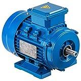 Mophorn Motor Trifasico Eléctrico 3 Fases B3 3000PRM para Industrial y Agrícola Transporte etc.