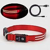 Pumila LED Hundehalsband Leuchtendes Hundehalsband USB Wiederaufladbare 100% wasserdichtes Einstellbare für Kleine Mittlere und Große Hunde - Rot - L