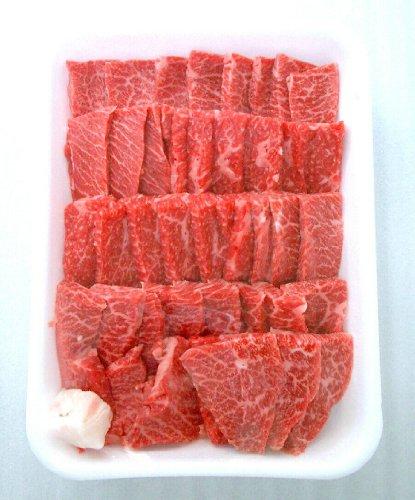 飛騨牛バラ肉 焼肉・バーベキューBBQ用 500g(600円/100g)