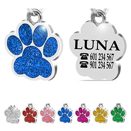 Placa Chapa de identificación Personalizada para Collar Perro Gato Mascota grabada (Azul)