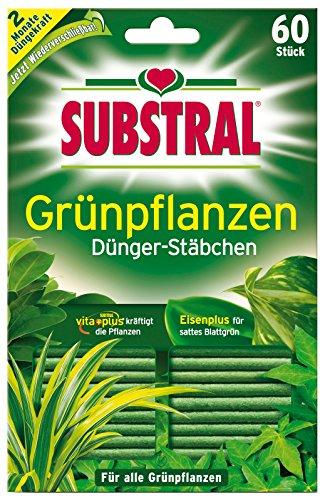 Substral® Dünger-Stäbchen für Grünpflanzen - 60 Stück