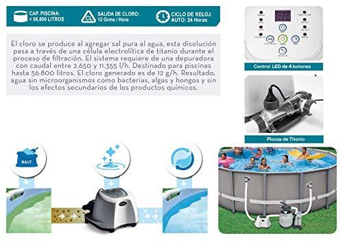 Intex 26670 Sistema cloración salina ECO 12 gramos/hora: Amazon.es ...