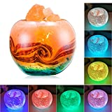 FANHAO Himalayan Salt Lamp, 7 Colors Changing Crystal Salt Lamps with Hand-Painted Glass Container for Air Purifying, Home Décor, Holiday Gifts - 3 Watts LED Bulb + 55in USB Cable +Gift Box