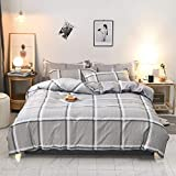 Nokolulu Farmhouse Buffalo Check Gingham Simple Geometric Square Pattern Bedding Set Modern and Fashionable Plaid Anti Allergy Duvet Cover with Sham Set for Home (Queen, Light Grey)