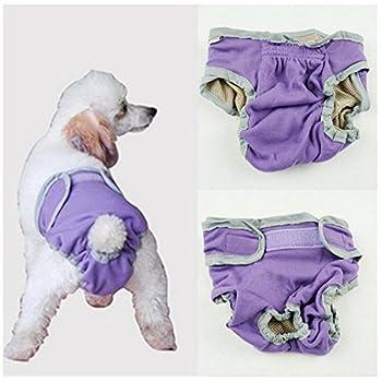 Amuzocity Chienne Culotte Sanitaire Physiologique Hygienique en Coton pour Santé - Violet, XL