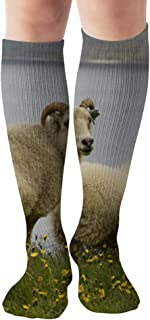 Wild White Icelandic Sheep Agriculture Parks Outdoor Compression Socks For Women And Men - Best Medical,For Running, Athletic, Varicose Veins, Travel 19.68 Inch